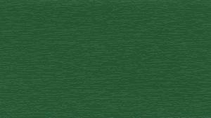 RENOLIT EXOFOL Изумрудно-зеленый (Emerald Green)